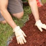 DIY mulch pathway